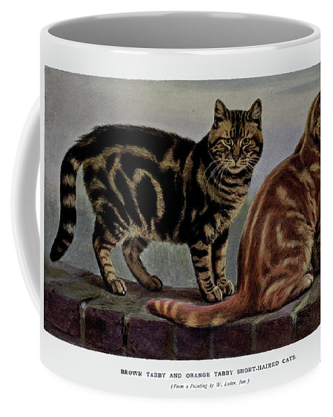 Cats Coffee Mug featuring the painting Brown Tabby And Orange Tabby by W Luker Junior