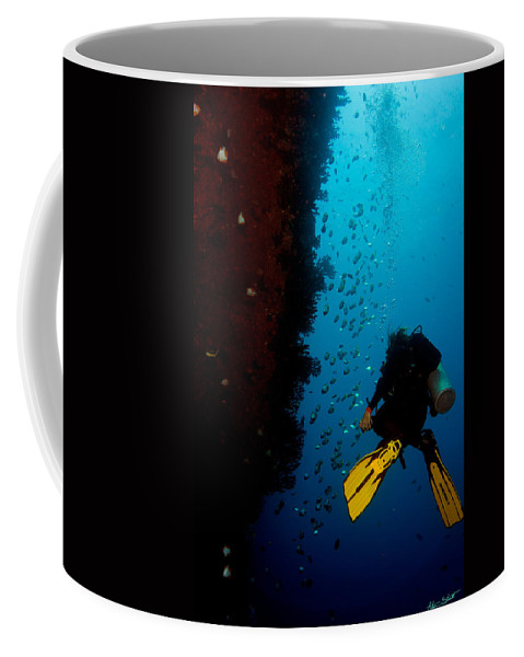 Diving Coffee Mug featuring the photograph Bubbles And Butterfly Fish by Mumbles and Grumbles