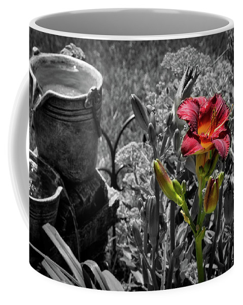 Summer Coffee Mug featuring the photograph Buckets Of Water And A Splash Of Flower by Deborah Klubertanz