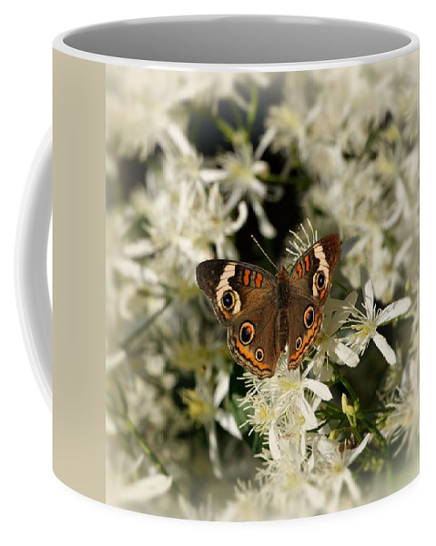 Butterfly Coffee Mug featuring the photograph Buckeye On Wildflowers by Sandy Keeton