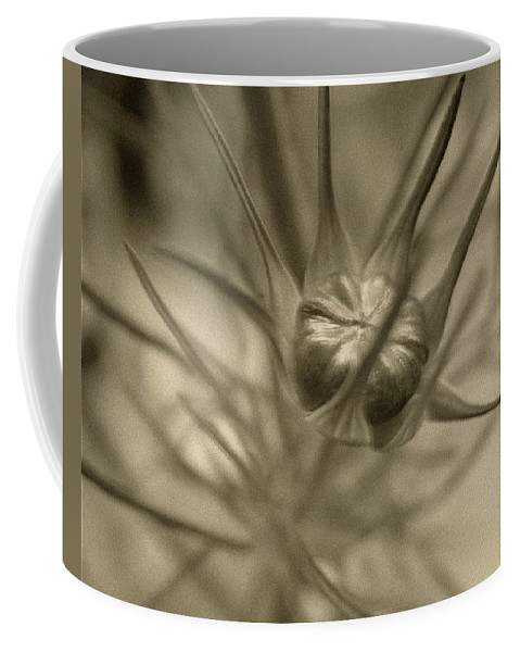 Bud Coffee Mug featuring the photograph Budding Beauty by RC DeWinter
