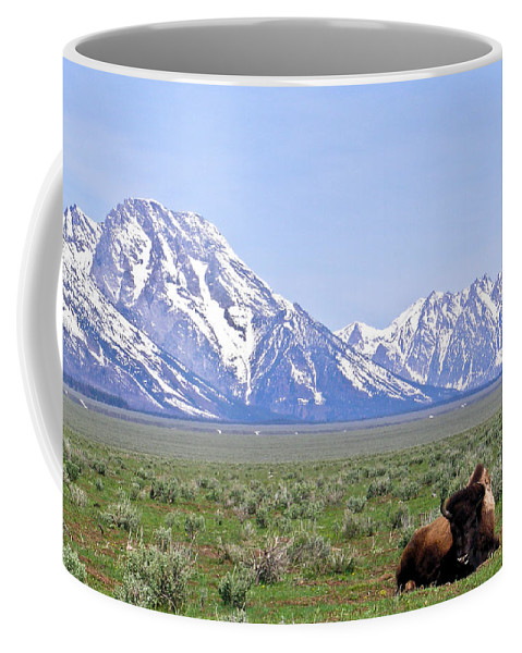 Buffalo Coffee Mug featuring the photograph Buffalo At Rest by Douglas Barnett