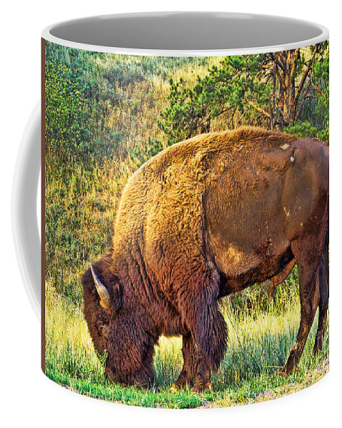 Custer State Park Coffee Mug featuring the photograph Buffalo Custer State Park by Tommy Anderson