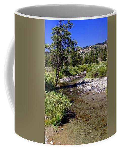 Montana Coffee Mug featuring the photograph Buffalo Fork by Marty Koch