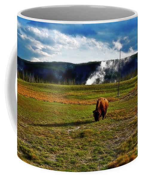 Yellowstone Coffee Mug featuring the photograph Buffalo In Yellowstone by David Arment