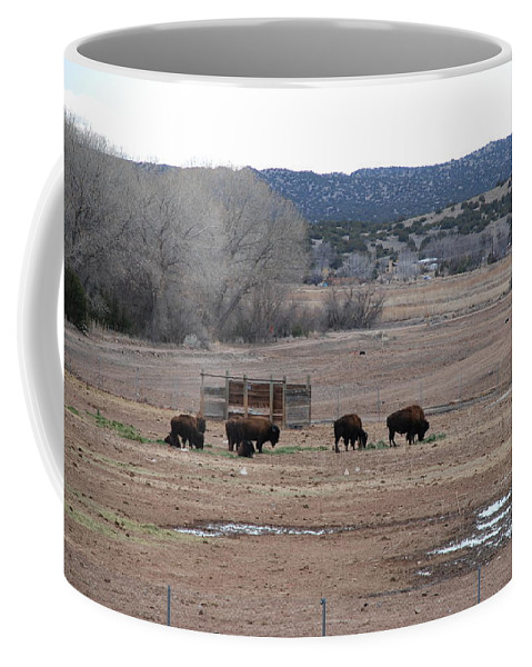 Buffalo Coffee Mug featuring the photograph Buffalo New Mexico by Rob Hans