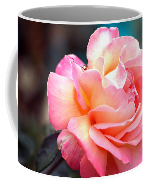 Flowers Coffee Mug featuring the photograph Buffum Rose by Norman Andrus