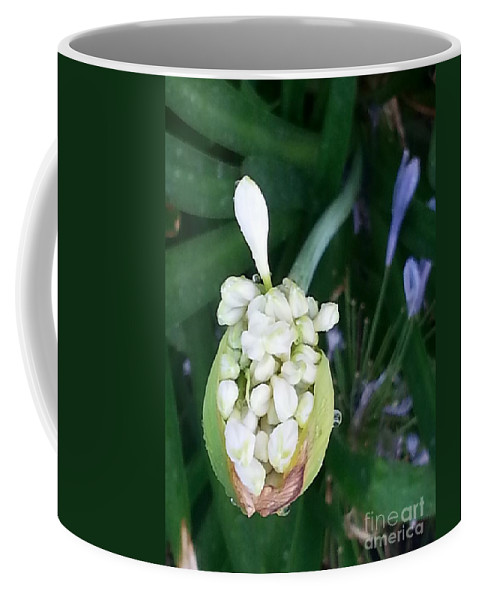 Bulb Coffee Mug featuring the photograph Bulb by Michelle S White