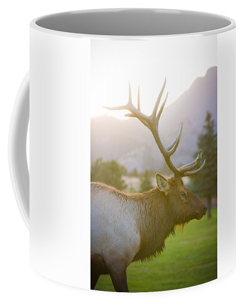 Elk Coffee Mug featuring the photograph Bull Elk Profile by James BO Insogna