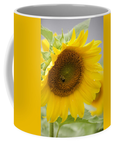 Flower Coffee Mug featuring the photograph Bumble Bee And The Sunflower by Tiffany Erdman