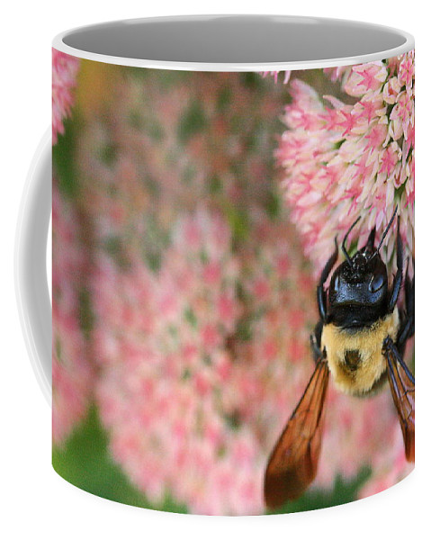 Bee Coffee Mug featuring the photograph Bumble Bee by Angela Rath