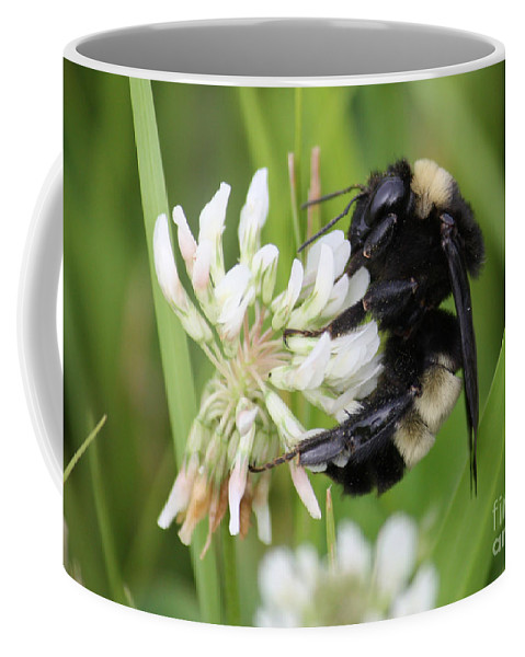 Bumble Bee Coffee Mug featuring the photograph Bumble Bee By The Pond by Carol Groenen