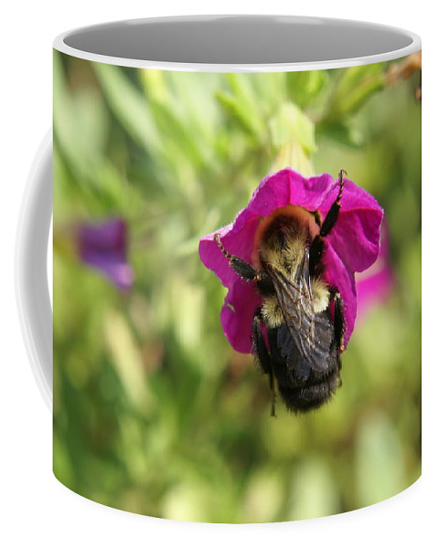 Bumble Bee Coffee Mug featuring the photograph Bumble Bee by Heidi Poulin