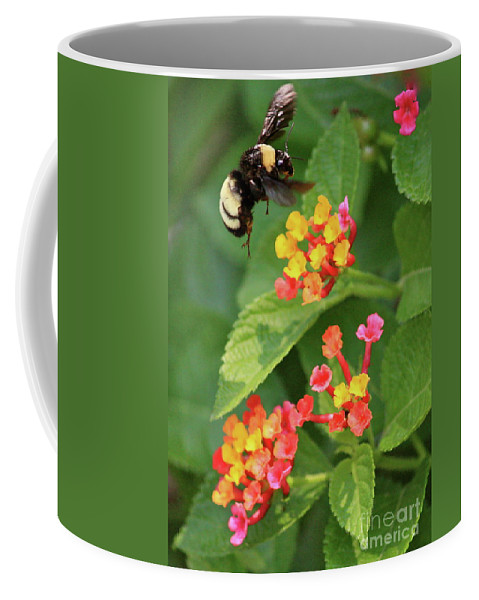Bee Coffee Mug featuring the photograph Bumble Bee In Flight by Carol Groenen
