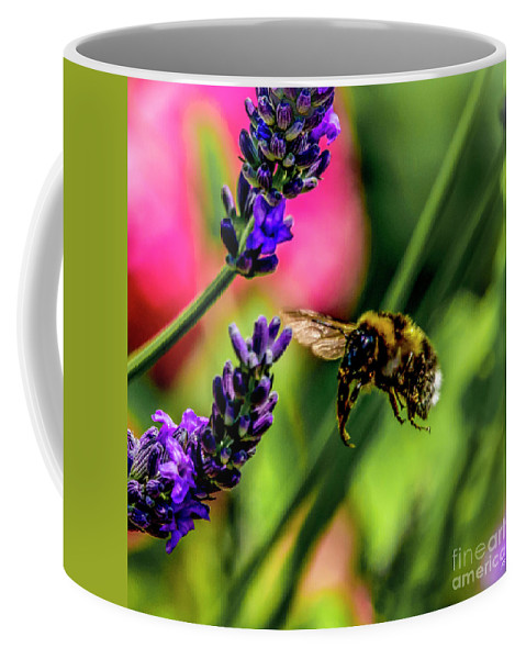 Bumble Bee Coffee Mug featuring the photograph Bumble Bee In Flight by Nigel Dudson