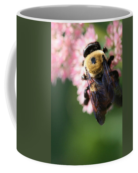 Bee Coffee Mug featuring the photograph Bumble From Above by Angela Rath