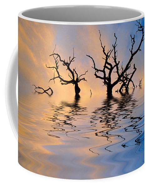Original Art Coffee Mug featuring the photograph Slowly Sinking by Jerry McElroy