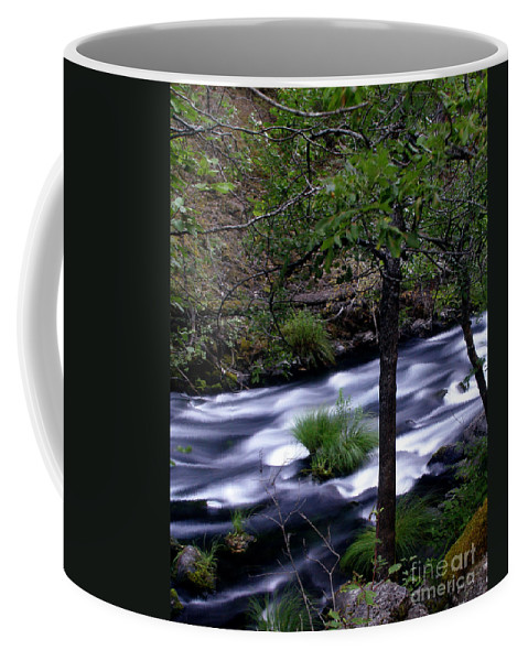 River Coffee Mug featuring the photograph Burney Creek by Peter Piatt
