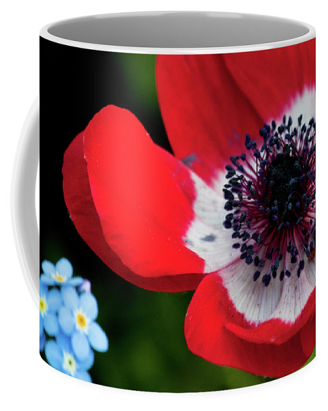 Blue Coffee Mug featuring the photograph Burst Of Red by Trish Tritz