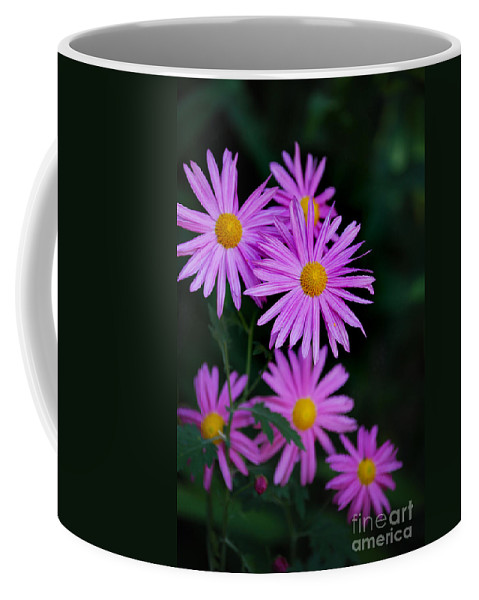 Pictures Of Flowers Coffee Mug featuring the photograph Burst by Skip Willits