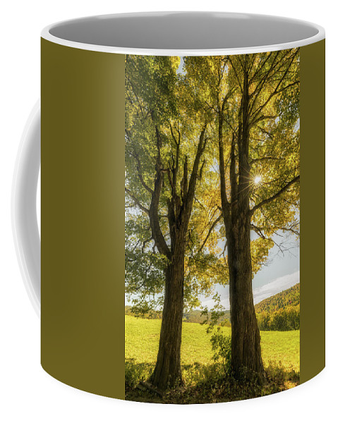Bridges Coffee Mug featuring the photograph Bursting by Jason Dodd
