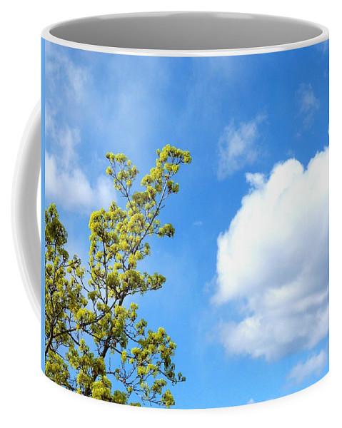 Bursting With New Life Coffee Mug featuring the photograph Bursting With New Life by Will Borden