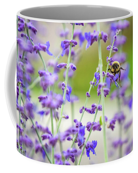 Coffee Mug featuring the photograph Busy In Lavender 3 by Steve Harrington