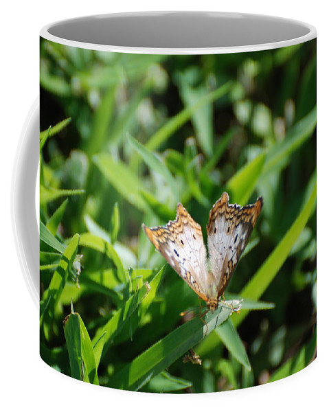 Butterfly Coffee Mug featuring the photograph Butter Fly by Rob Hans