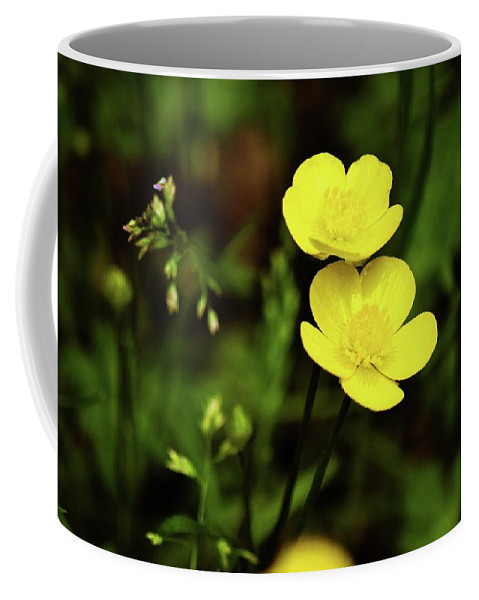 Flower Coffee Mug featuring the photograph Buttercup by Shelley Smith