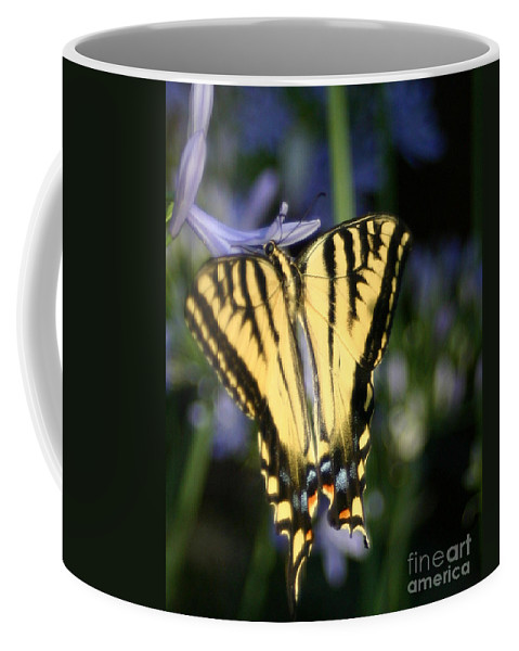 Butterfly Coffee Mug featuring the photograph Butterfly - 2 by Melanie Rainey