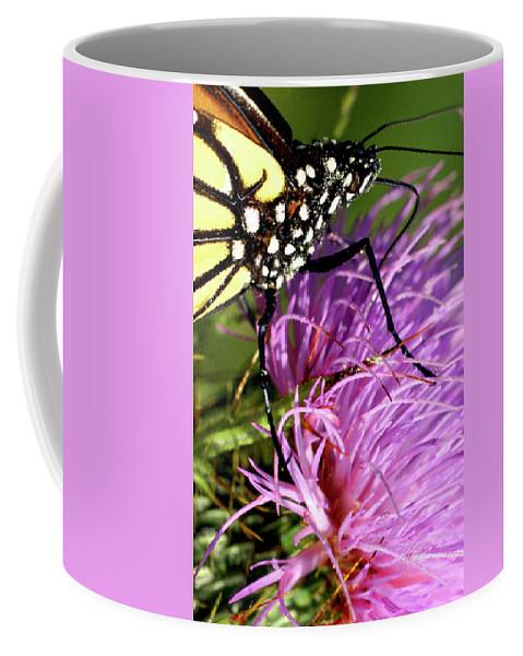 Macro Photography Coffee Mug featuring the photograph Butterfly Closeup Vertical by Meta Gatschenberger