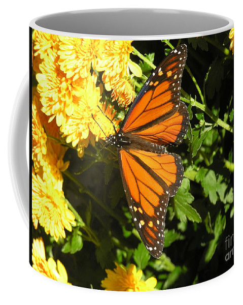 Butterfly Coffee Mug featuring the photograph Butterfly by Diane Greco-Lesser