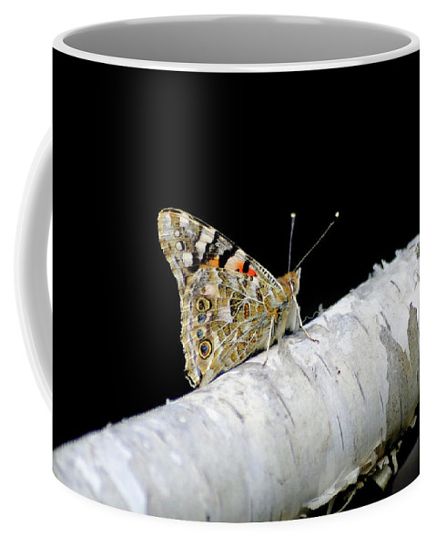 Farfalla Coffee Mug featuring the photograph Butterfly by Ilaria Andreucci