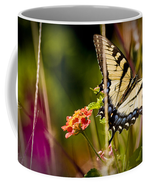 Nature Coffee Mug featuring the photograph Butterfly Jungle by Ches Black