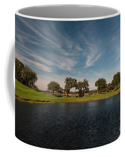 Middleton Coffee Mug featuring the photograph Butterfly Lake At Middleton Place by Dale Powell