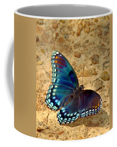 Red Spotted Purple Coffee Mug featuring the photograph Butterfly Landing by Terry Anderson