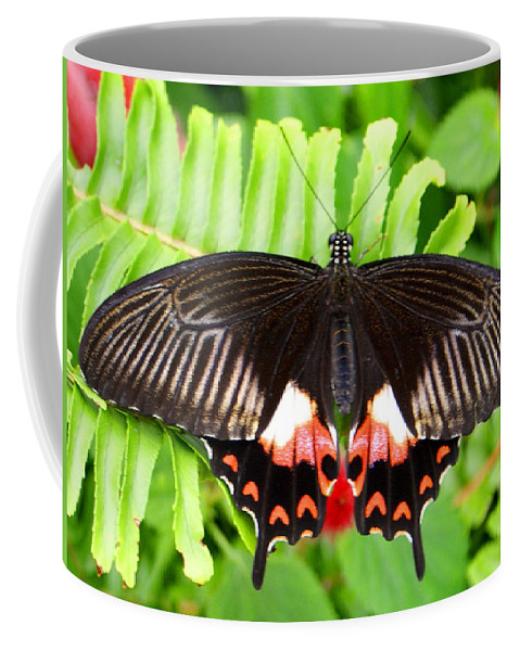 Butterfly Coffee Mug featuring the photograph Butterfly Maze by Jean Haynes