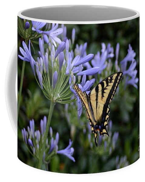 Nature Coffee Mug featuring the photograph Butterfly by Melanie Rainey