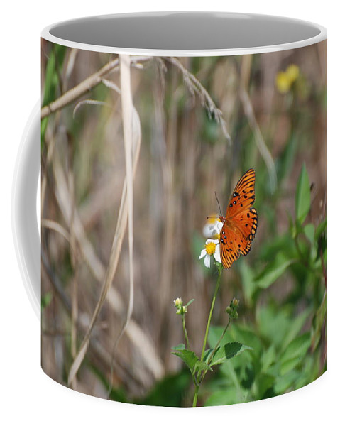 Nature Coffee Mug featuring the photograph Butterfly On Flower by Rob Hans