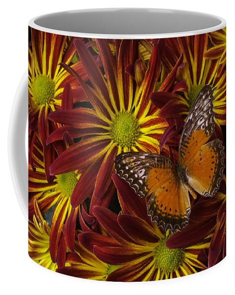 Red Yellow Coffee Mug featuring the photograph Butterfly Resting On Chrysanthemums by Garry Gay
