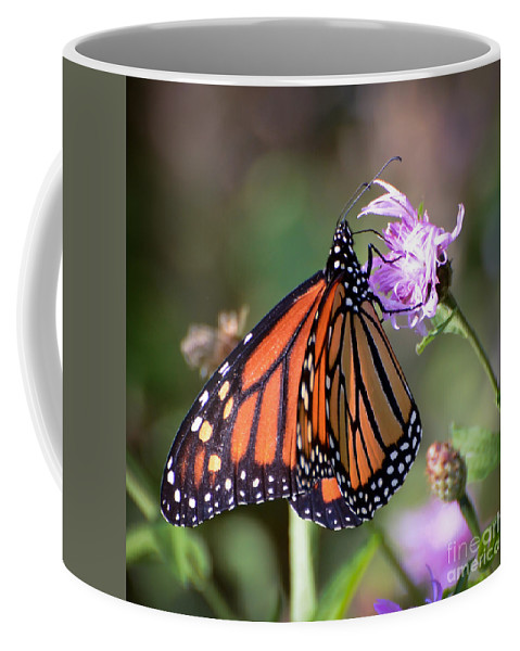 Monarch Butterfly Coffee Mug featuring the photograph Butterfly - The Monarch by Kerri Farley