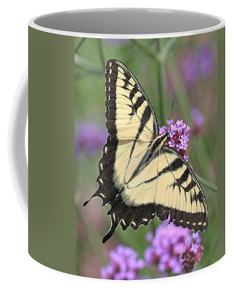 Nature Coffee Mug featuring the photograph Butterfly Wings by Mike Dickie