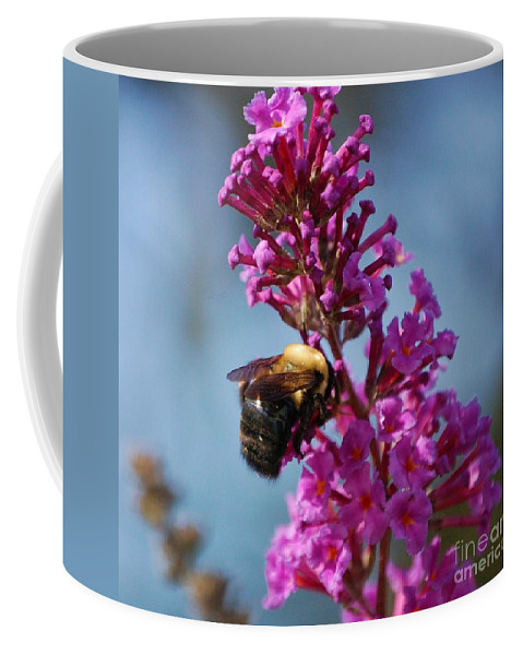 Bee Coffee Mug featuring the photograph Buzzed by Debbi Granruth