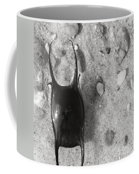 Skate Coffee Mug featuring the photograph bw1 by Charles Harden