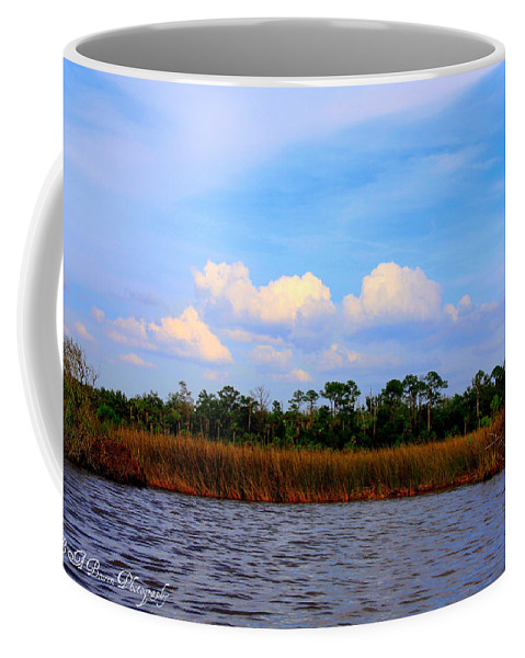 Cabbage Palms Coffee Mug featuring the photograph Cabbage Palms And Salt Marsh Grasses Of The Waccasassa Preserve by Barbara Bowen