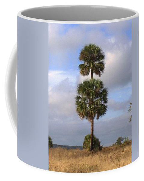 Nature Coffee Mug featuring the photograph Cabbage Palms by Peg Urban