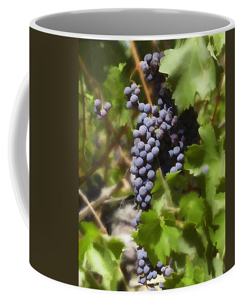 Cabernet Coffee Mug featuring the photograph Cabernet by Kurt Van Wagner