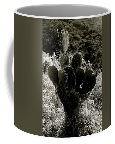 Cactus Coffee Mug featuring the photograph Cacti On Molokai by Wendy Mae Peters