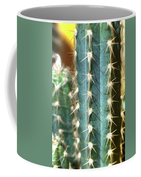 Cactus Coffee Mug featuring the photograph Cactus 3 by Jim And Emily Bush