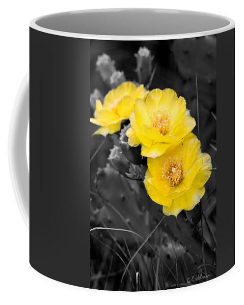 Cactus Coffee Mug featuring the photograph Cactus Blossom by Christopher Holmes